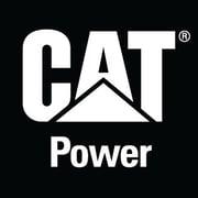Cat Decal (128A)-1